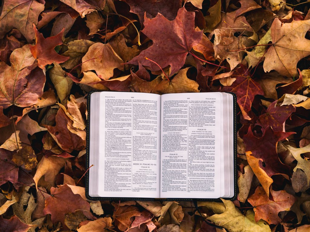 Open bible laying on a bed of autumn leaves